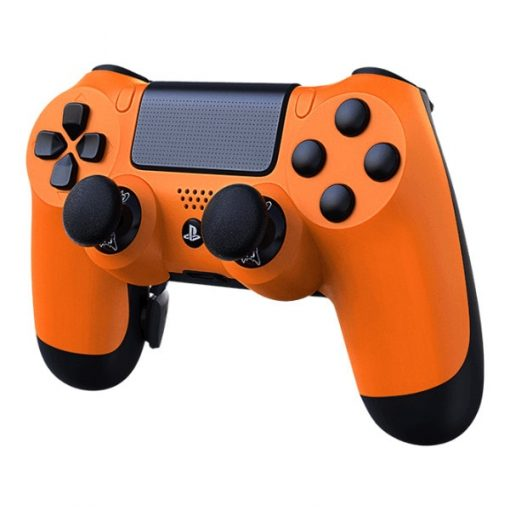 Custom PlayStation 4 controller